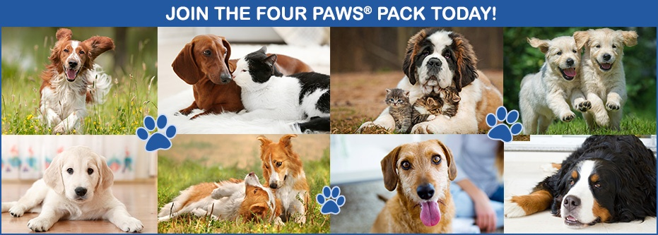 Join The Four Paws Pack